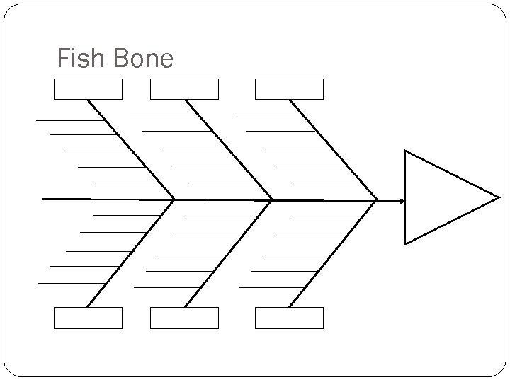 Fish Bone 49