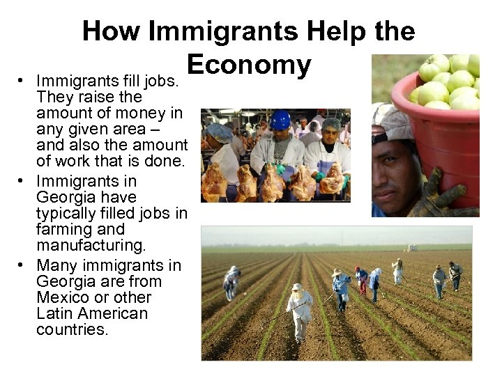 • How Immigrants Help the Economy Immigrants fill jobs. They raise the amount