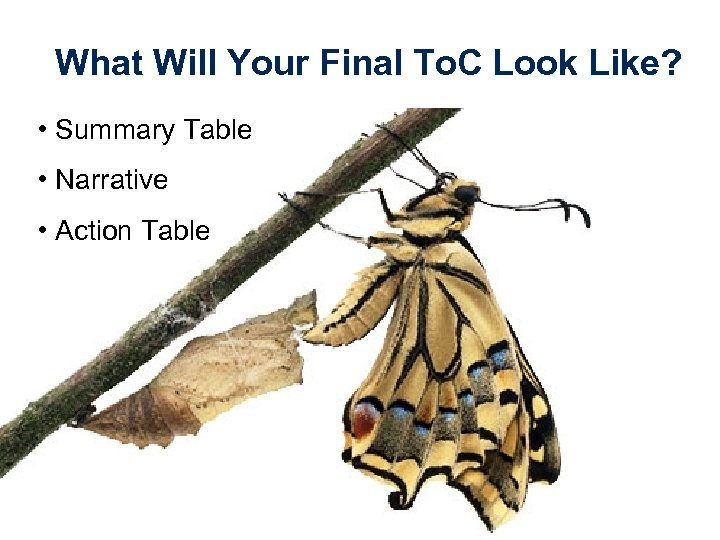 What Will Your Final To. C Look Like? • Summary Table • Narrative •