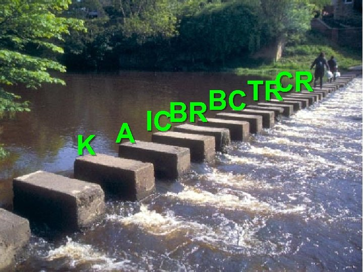 CR TR BC BR IC A K