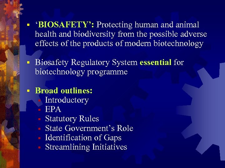 § 'BIOSAFETY': Protecting human and animal health and biodiversity from the possible adverse effects