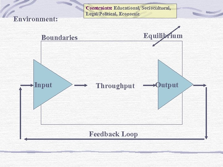 Environment: Constraints: Educational, Sociocultural, Legal/Political, Economic Equilibrium Boundaries Input Throughput Feedback Loop Output