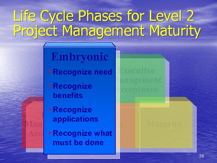 Life Cycle Phases for Level 2 Project Management Maturity Embryonic • Recognize need Executive