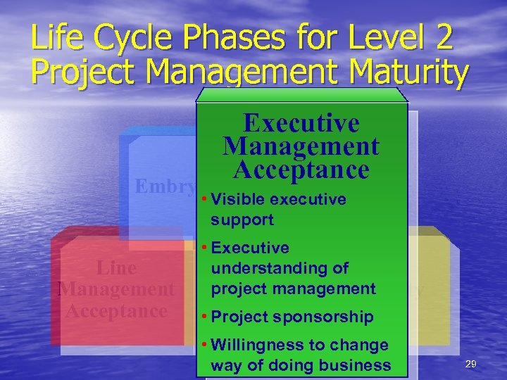 Life Cycle Phases for Level 2 Project Management Maturity Executive Management Executive Acceptance Embryonic