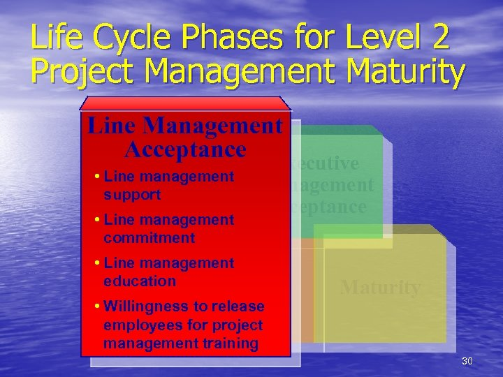 Life Cycle Phases for Level 2 Project Management Maturity Line Management Acceptance • Line