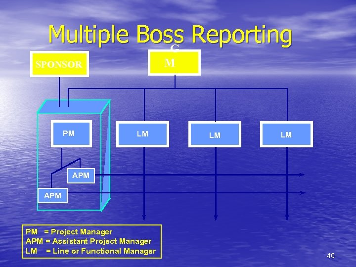 Multiple Boss Reporting G M SPONSOR PM LM LM LM APM PM = Project
