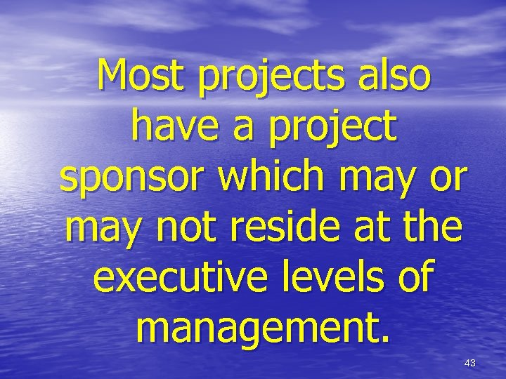 Most projects also have a project sponsor which may or may not reside at