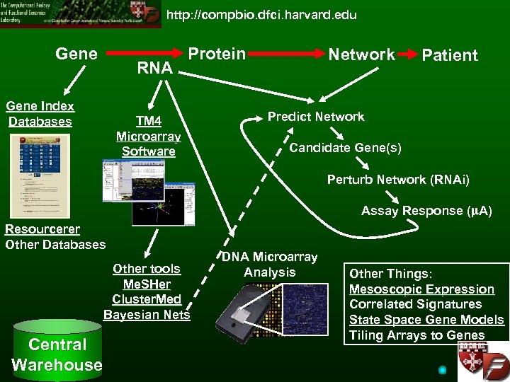 http: //compbio. dfci. harvard. edu Gene RNA Gene Index Databases Protein TM 4 Microarray