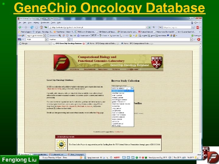 Gene. Chip Oncology Database Fenglong Liu