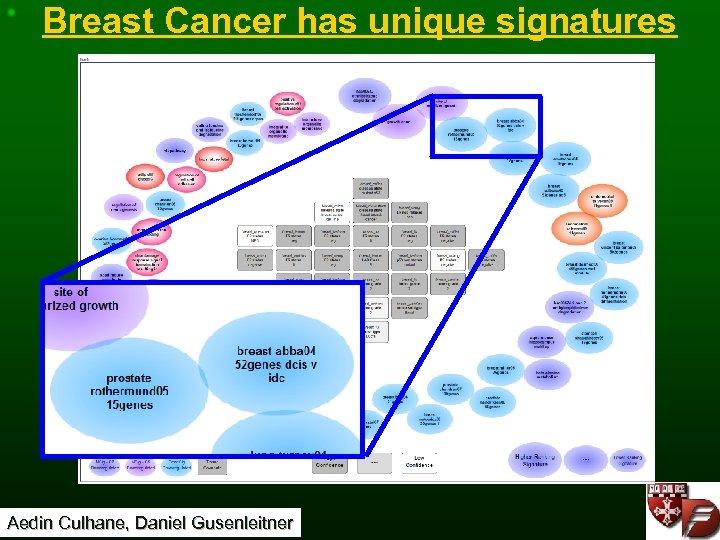Breast Cancer has unique signatures Aedin Culhane, Daniel Gusenleitner