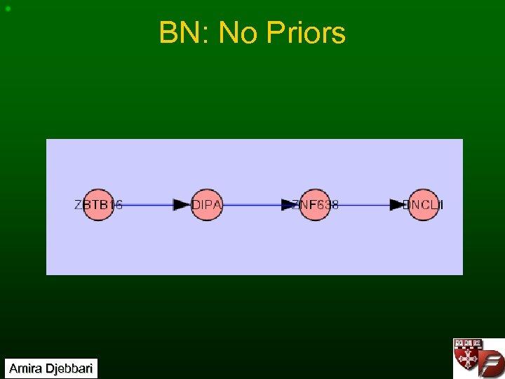 BN: No Priors Amira Djebbari