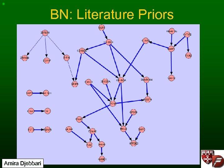 BN: Literature Priors Amira Djebbari