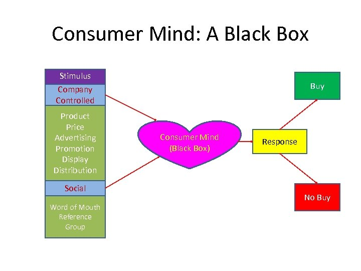 Consumer Mind: A Black Box Stimulus Company Controlled Product Price Advertising Promotion Display Distribution