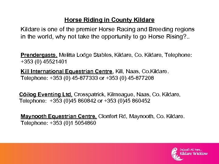 Horse Riding in County Kildare is one of the premier Horse Racing and Breeding