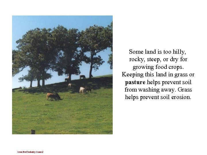 Some land is too hilly, rocky, steep, or dry for growing food crops. Keeping