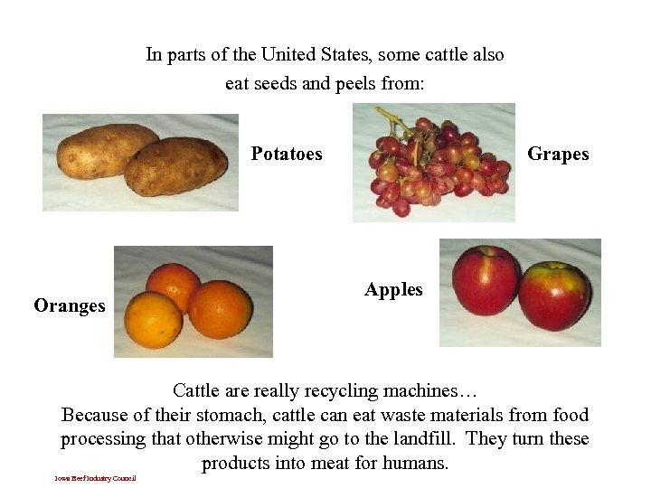 In parts of the United States, some cattle also eat seeds and peels from: