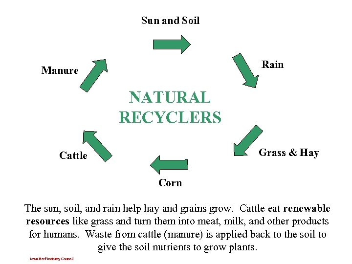 Sun and Soil Rain Manure NATURAL RECYCLERS Grass & Hay Cattle Corn The sun,