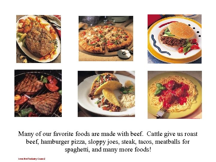 Many of our favorite foods are made with beef. Cattle give us roast beef,