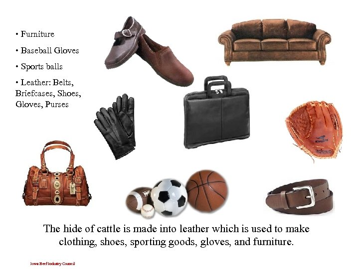 • Furniture • Baseball Gloves • Sports balls • Leather: Belts, Briefcases, Shoes,