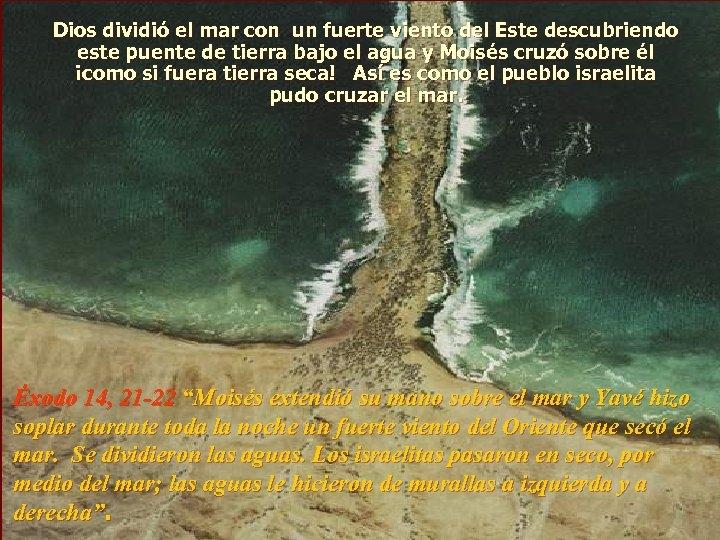 Dios dividió el mar con un fuerte viento del Este descubriendo este puente de