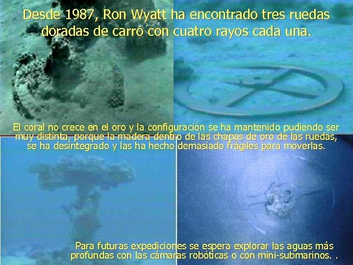 Desde 1987, Ron Wyatt ha encontrado tres ruedas doradas de carro con cuatro rayos