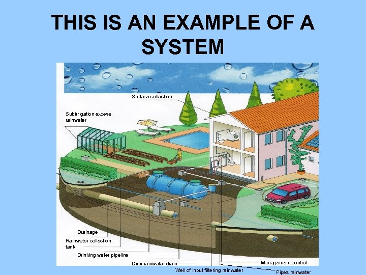THIS IS AN EXAMPLE OF A SYSTEM Surface collection Subirrigation excess rainwater Drainage Rainwater