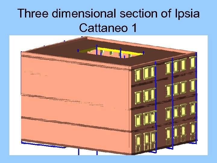 Three dimensional section of Ipsia Cattaneo 1