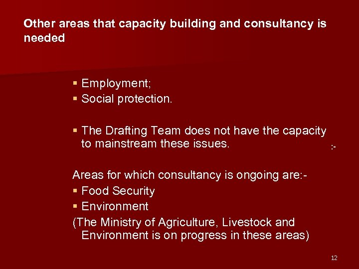Other areas that capacity building and consultancy is needed § Employment; § Social protection.