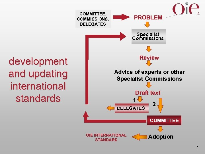 COMMITTEE, COMMISSIONS, DELEGATES PROBLEM Specialist Commissions development and updating international standards Review Advice of
