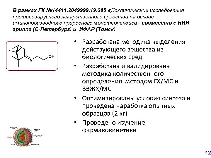 В рамках ГК № 14411. 2049999. 19. 085 «Доклинические исследования противовирусного лекарственного средства на
