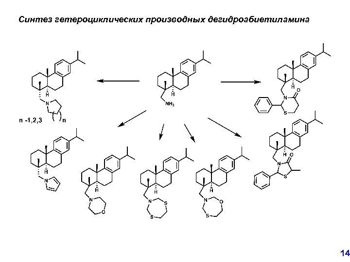 Синтез гетероциклических производных дегидроабиетиламина 14