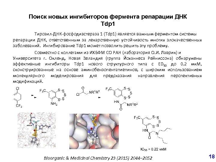 Поиск новых ингибиторов фермента репарации ДНК Tdp 1 Тирозил-ДНК-фосфодиэстераза 1 (Tdp 1) является важным