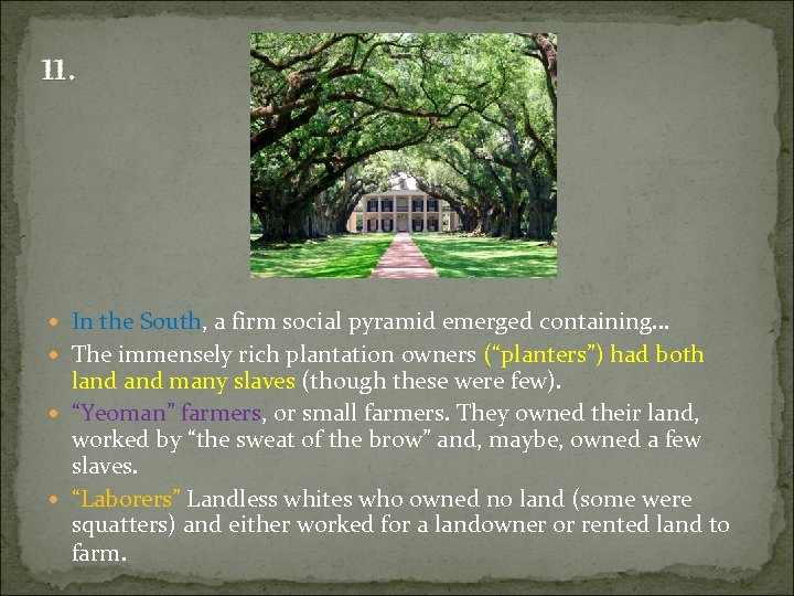 11. In the South, a firm social pyramid emerged containing… The immensely rich plantation