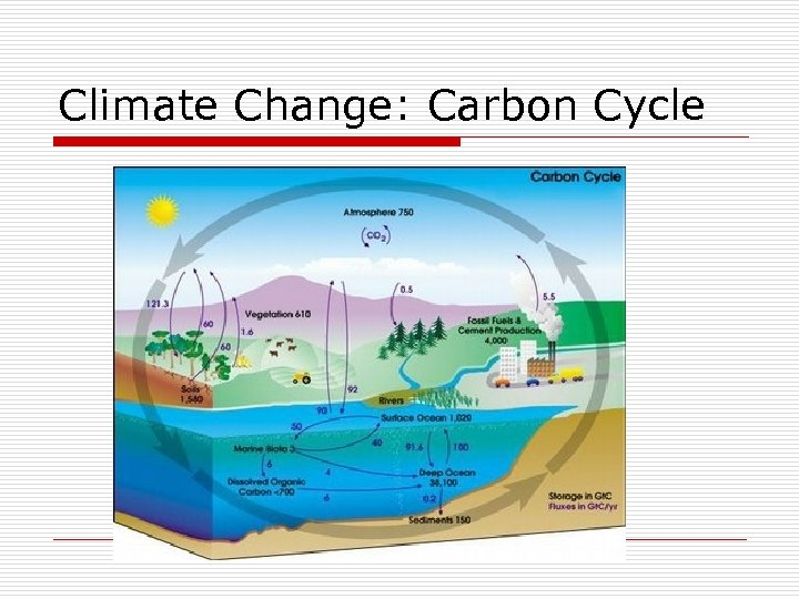 Climate Change: Carbon Cycle