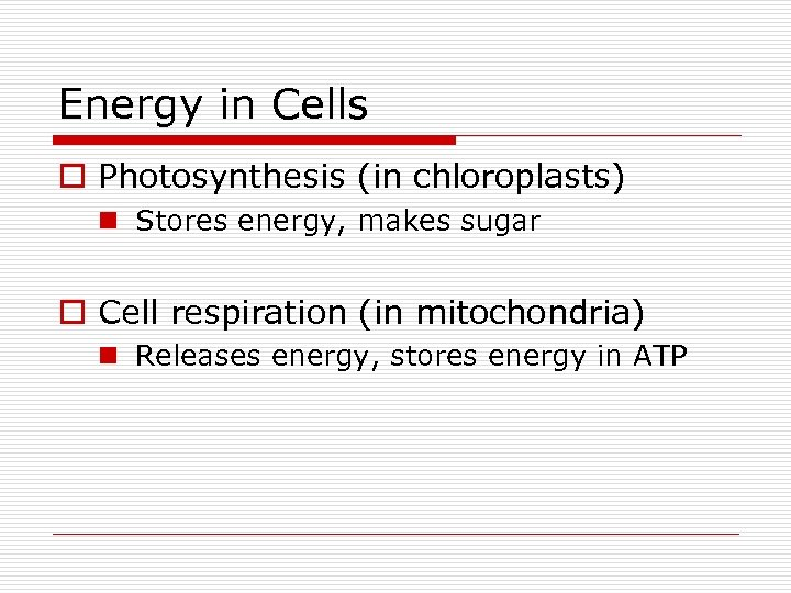 Energy in Cells o Photosynthesis (in chloroplasts) n Stores energy, makes sugar o Cell