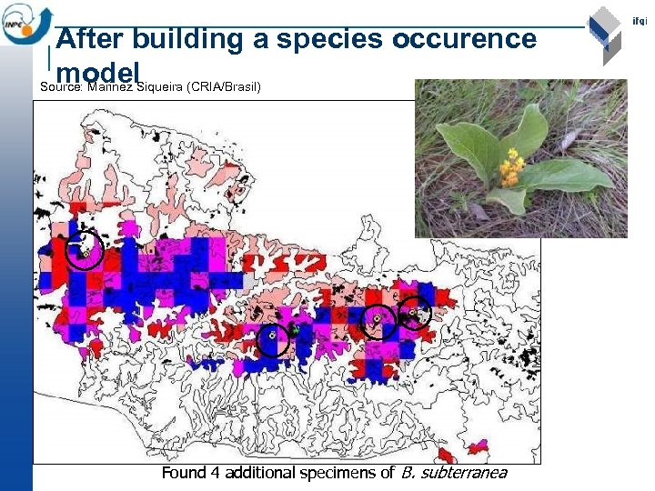 After building a species occurence model Source: Marinez Siqueira (CRIA/Brasil) Found 4 additional specimens