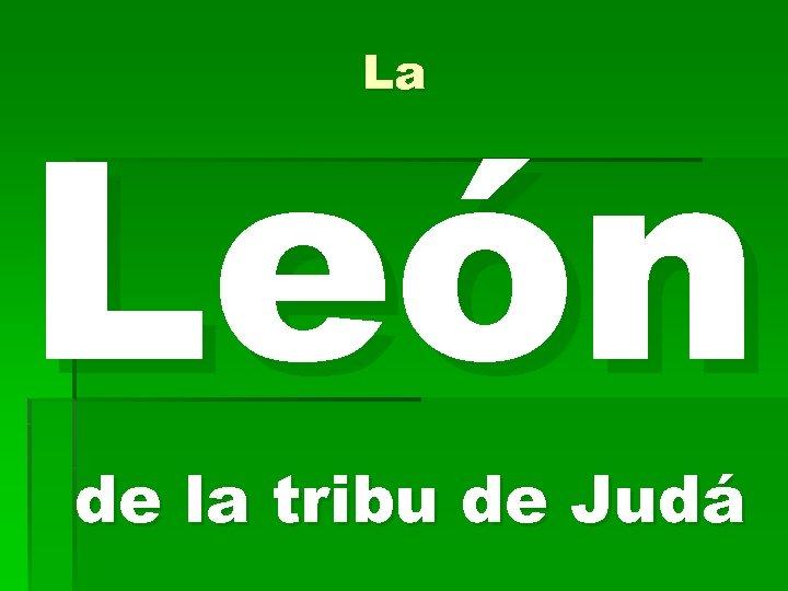 La León de la tribu de Judá