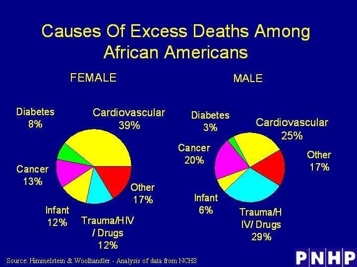 Causes Of Excess Deaths Among African Americans