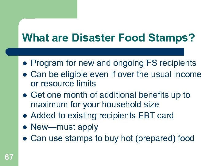 What are Disaster Food Stamps? l l l 67 Program for new and ongoing