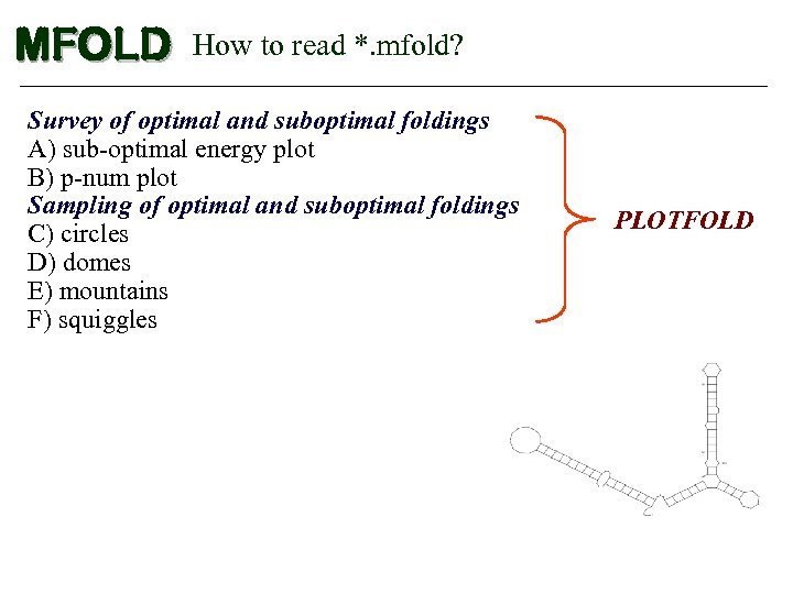 MFOLD How to read *. mfold? Survey of optimal and suboptimal foldings A) sub-optimal