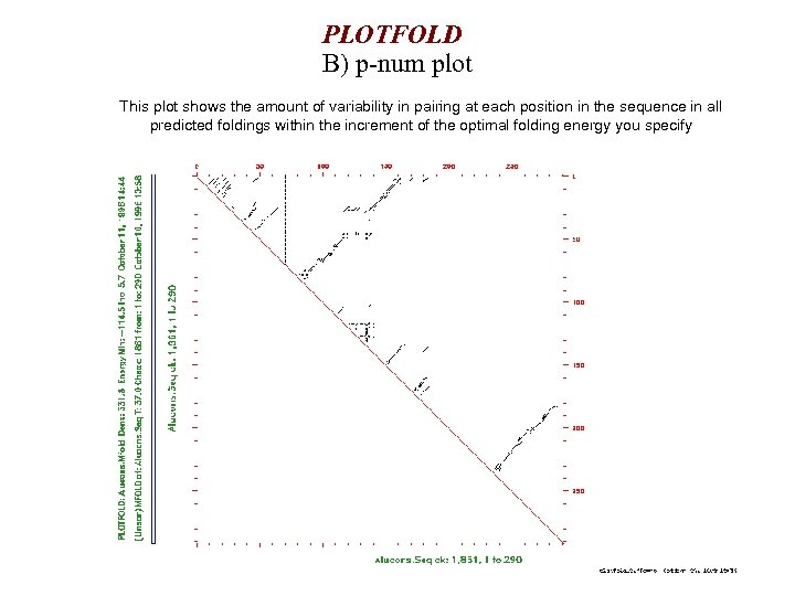 PLOTFOLD B) p-num plot This plot shows the amount of variability in pairing at