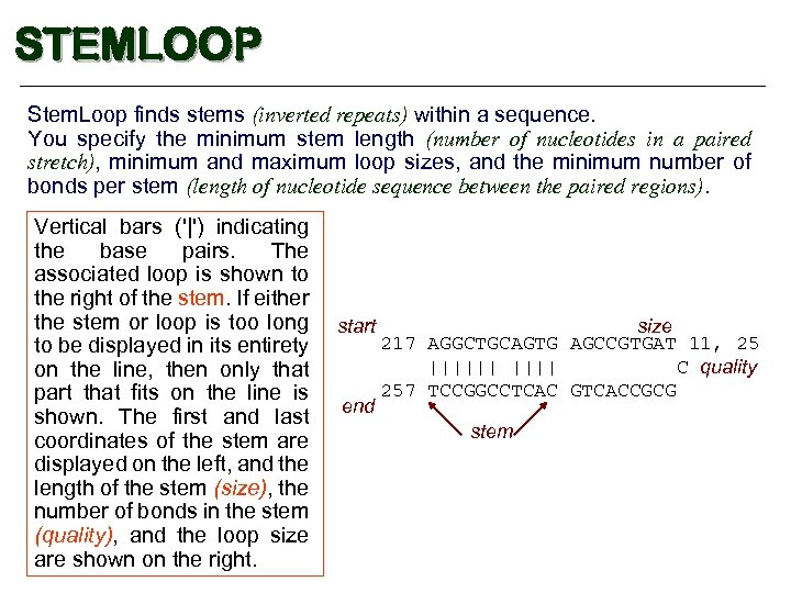 STEMLOOP Stem. Loop finds stems (inverted repeats) within a sequence. You specify the minimum