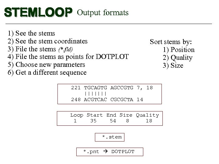 STEMLOOP Output formats 1) See the stems 2) See the stem coordinates 3) File