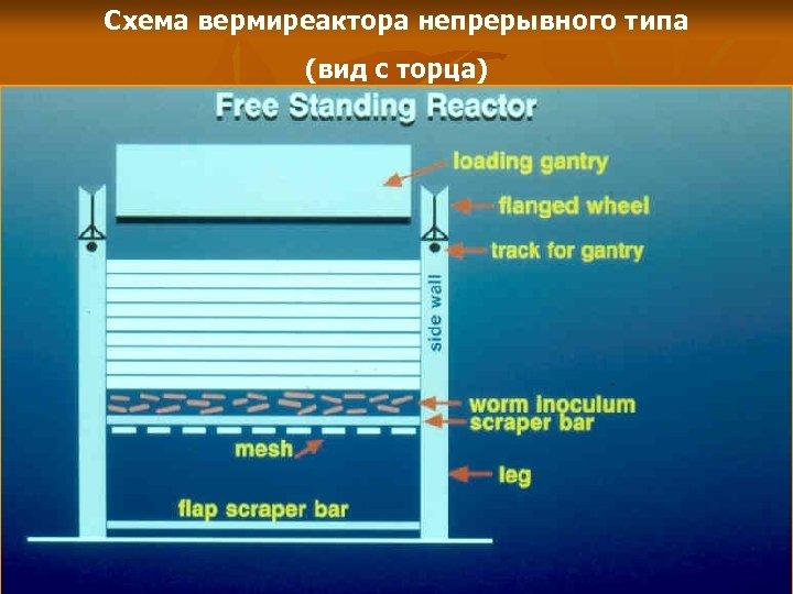 Схема вермиреактора непрерывного типа (вид с торца)