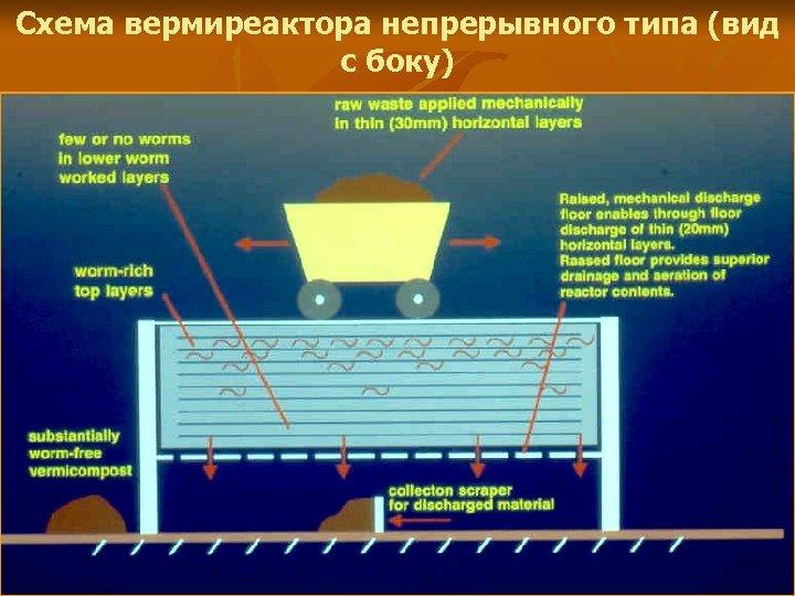 Схема вермиреактора непрерывного типа (вид с боку)
