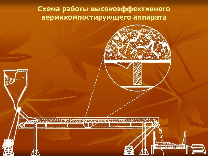 Схема работы высокоэффективного вермикомпостирующего аппарата