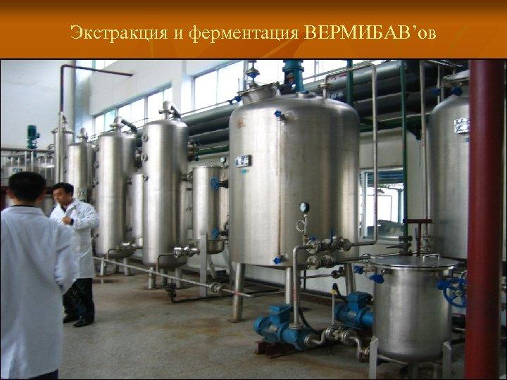Экстракция и ферментация ВЕРМИБАВ'ов