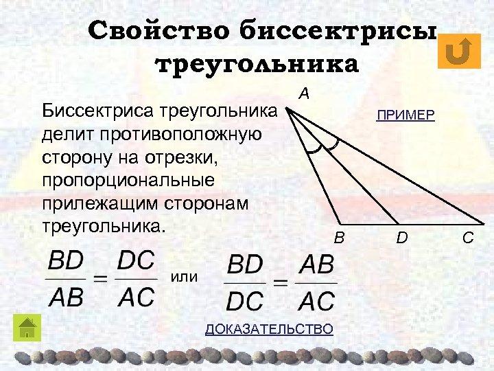 Свойство биссектрисы треугольника Биссектриса треугольника делит противоположную сторону на отрезки, пропорциональные прилежащим сторонам треугольника.