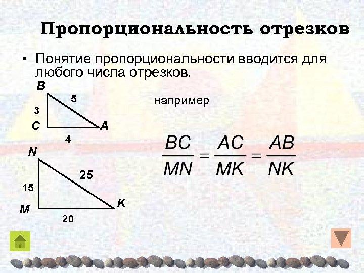 Пропорциональность отрезков • Понятие пропорциональности вводится для любого числа отрезков. B 5 например 3