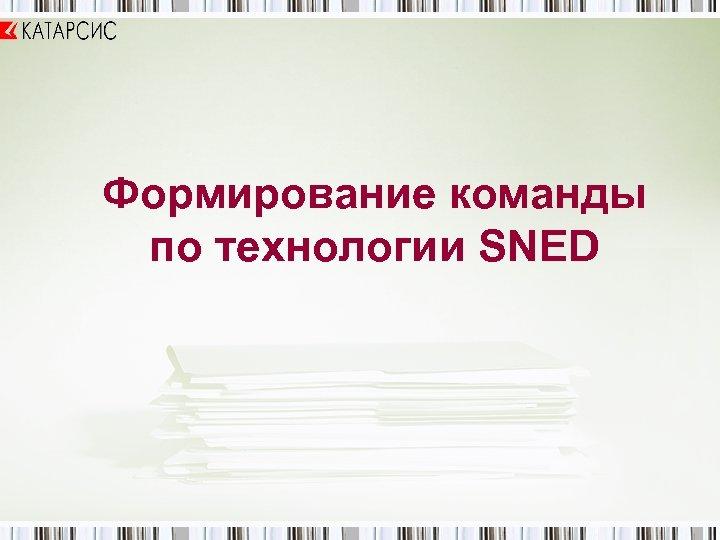 Формирование команды по технологии SNED